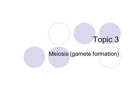 Topic 3 Meiosis (gamete formation) Human chromosomes Human somatic cells (any cell other than a gamete) have: 22 pairs of homologous chromosomes 1 pair.