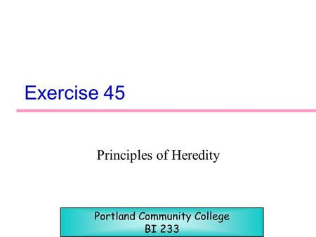 Exercise 45 Principles of Heredity Portland Community College BI 233.