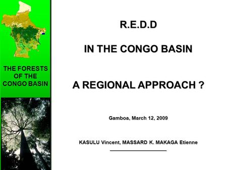 THE FORESTS OF THE CONGO BASIN R.E.D.D IN THE CONGO BASIN A REGIONAL APPROACH ? Gamboa, March 12, 2009 KASULU Vincent, MASSARD K. MAKAGA Etienne ____________________.