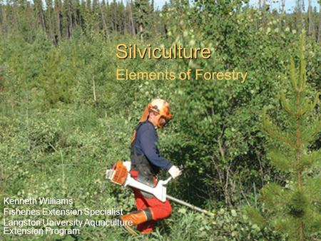 Silviculture Elements of Forestry Kenneth Williams