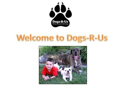 We help dogs who have no homeGive you a new little brother or sisterGive a cute dog a nice home.
