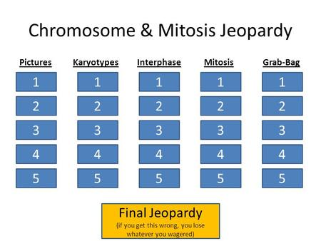 Chromosome & Mitosis Jeopardy 1 2 3 4 5 1 2 3 4 5 1 2 3 4 5 1 2 3 4 5 1 2 3 4 5 PicturesKaryotypesInterphaseMitosisGrab-Bag Final Jeopardy (if you get.