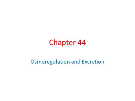 Chapter 44 Osmoregulation and Excretion. Overview: A Balancing Act Osmoregulation regulates solute concentrations and balances the gain and loss of water.