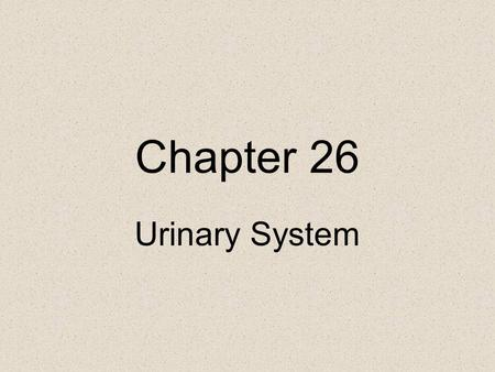 Chapter 26 Urinary System. Functions of the Kidneys Regulating blood ionic composition Regulating blood pH Regulating blood volume Regulating blood.
