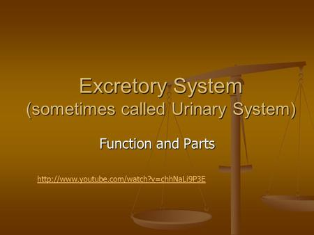 Excretory System (sometimes called Urinary System) Function and Parts