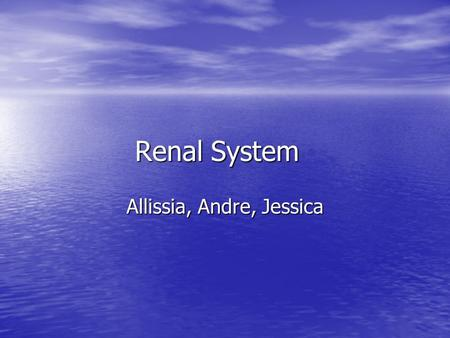 Renal System Allissia, Andre, Jessica. Warm-up Based off of the following diagram, tell your shoulder partner what you already know about the Renal system.