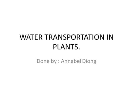 WATER TRANSPORTATION IN PLANTS. Done by : Annabel Diong.