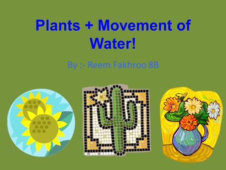 Plants + Movement of Water! By :- Reem Fakhroo 8B.