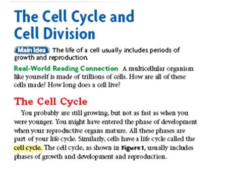 Cell Cycle 3 Steps Interphase cell growth and development