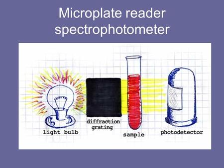 Microplate reader spectrophotometer. The Beer-Lambert Law A=abc Now let us look at the Beer-Lambert law and explore it's significance. A is absorbance.