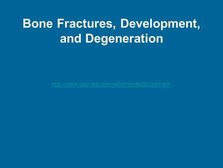Bone Fractures, Development, and Degeneration