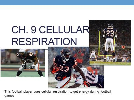 CH. 9 CELLULAR RESPIRATION This football player uses cellular respiration to get energy during football games.