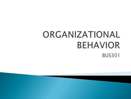 organizational behavior issues Organizational behavior fahad umar abstract: the paper contains a detail analysis of organizational behavior discussing issues facing cutting age organizations on leadership behavior, organizational effectiveness, organizational structures and human resource management.