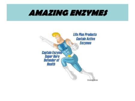 AMAZING ENZYMES. Just What are Enzymes? Enzymes are protein molecules that are manufactured by all plant and animal cells. All cells require enzymes to.