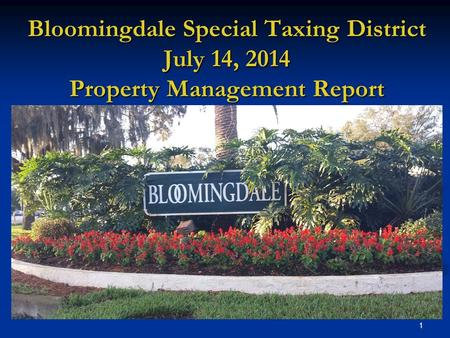 1 Bloomingdale Special Taxing District July 14, 2014 Property Management Report.