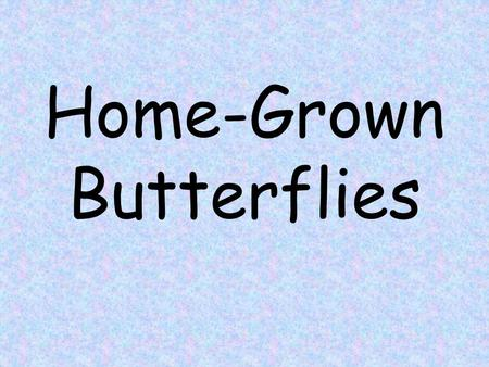 Home-Grown Butterflies. enclosure en-clo-sure noun The farmer build an enclosure around the cows so they wouldn ' t meander away from the farm. Enclosure.