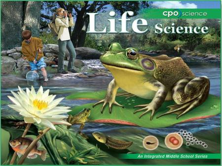 Living Systems Chapter Three: Classifying Living Things 3.1 Types of Living Things 3.2 Dichotomous Keys.