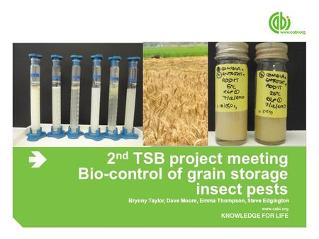 2 nd TSB project meeting Bio-control of grain storage insect pests Bryony Taylor, Dave Moore, Emma Thompson, Steve Edgington.