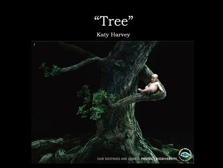 """Tree"" Katy Harvey. Background Information This is an advertisement for the Nicolas Hulot Foundation, an environmentalist group. It was originally released."