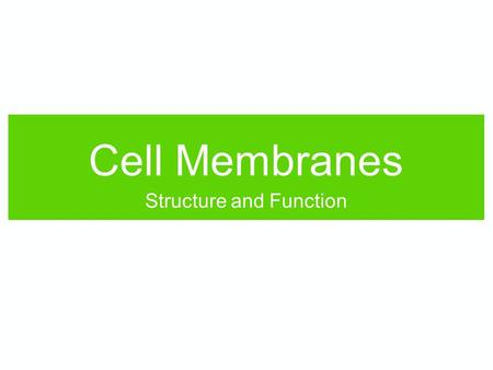 Cell Membranes Structure and Function. Quick review: Atoms bind together to make molecules.