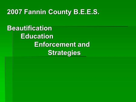 2007 Fannin County B.E.E.S. Beautification Education Enforcement and Strategies.