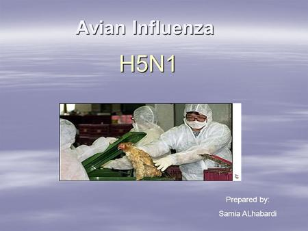 Avian Influenza H5N1 Prepared by: Samia ALhabardi.