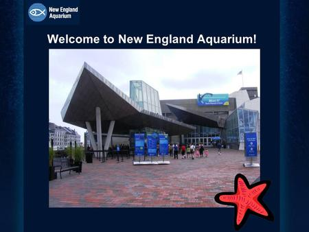 Welcome to New England Aquarium!. Map of Outside the Aquarium.