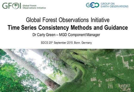 Global Forest Observations Initiative Time Series Consistency Methods and Guidance Dr Carly Green – MGD Component Manager SDCG 25 th September 2015, Bonn,