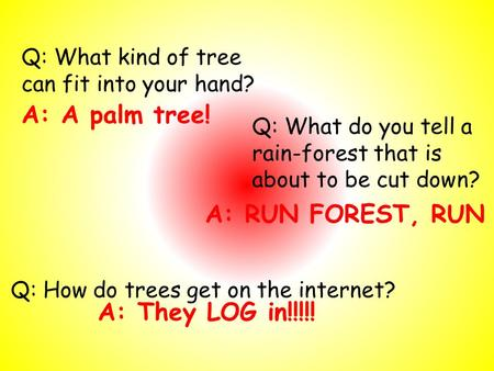 Q: What kind of tree can fit into your hand? A: A palm tree! Q: How do trees get on the internet? A: They LOG in!!!!! Q: What do you tell a rain-forest.