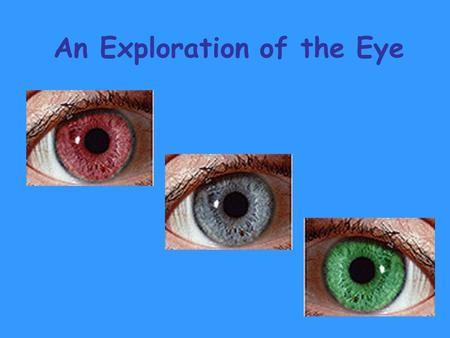 An Exploration of the Eye. Light is Essential for Vision.
