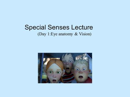 Special Senses Lecture (Day 1:Eye anatomy & Vision)