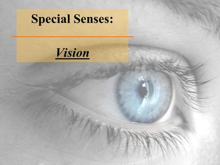 Special Senses: Vision. Eye Cancer (Retinoblastoma)