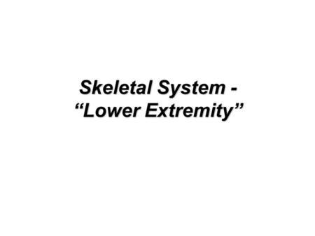 "Skeletal System - ""Lower Extremity"""