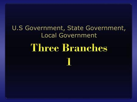 U.S Government, State Government, Local Government.