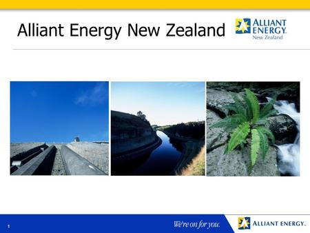 1 Alliant Energy New Zealand. 2 Alliant Energy in New Zealand Alliant Energy New Zealand Ltd New Zealand investment primarily in TrustPower, a public.