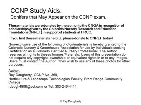 © Ray Daugherty CCNP Study Aids: Conifers that May Appear on the CCNP exam. These materials were donated by the author to the CNGA in recognition of scholarships.