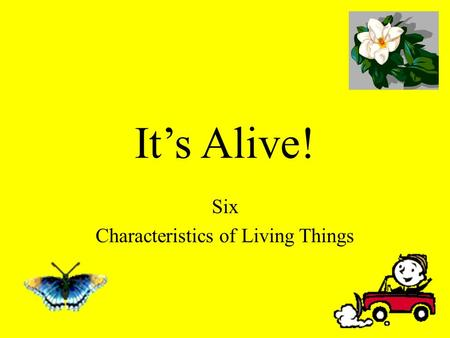It's Alive! Six Characteristics of Living Things.