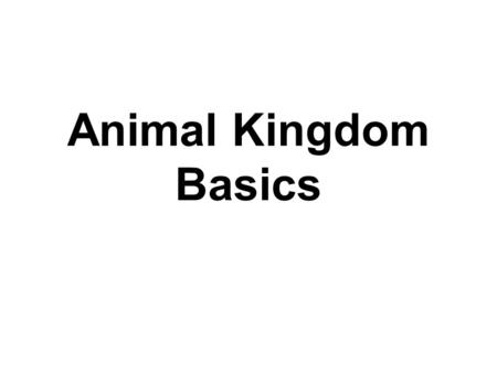 Animal Kingdom Basics. Body Areas Head Back Tail end Belly.