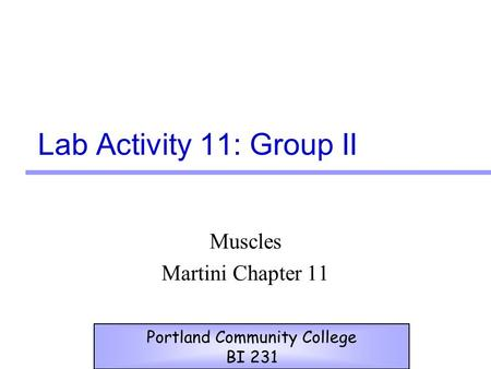 Lab Activity 11: Group II Muscles Martini Chapter 11 Portland Community College BI 231.