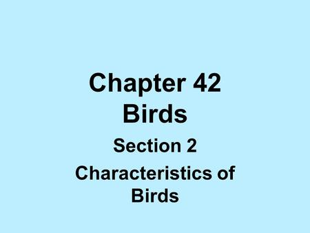 Chapter 42 Birds Section 2 Characteristics of Birds.