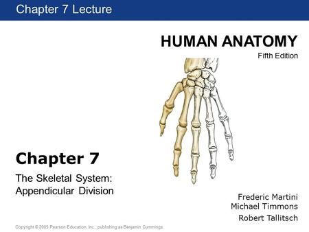 HUMAN ANATOMY Fifth Edition Chapter 1 Lecture Copyright © 2005 Pearson Education, Inc., publishing as Benjamin Cummings Chapter 7 The Skeletal System: