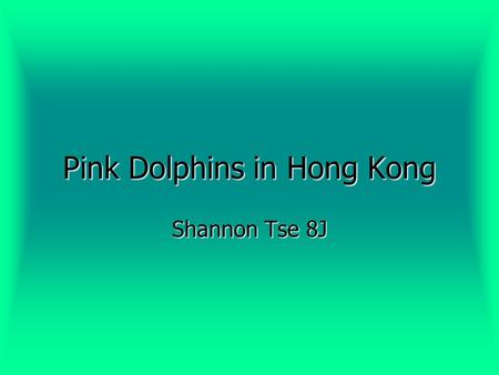 Pink Dolphins in Hong Kong Shannon Tse 8J. What are Pink Dolphins? Also known as the Chinese White Dolphin. Also known as the Chinese White Dolphin. Called.