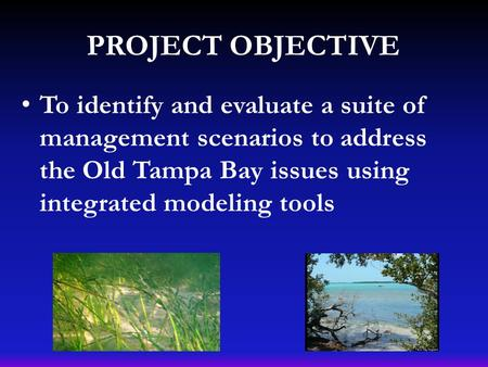 PROJECT OBJECTIVE To identify and evaluate a suite of management scenarios to address the Old Tampa Bay issues using integrated modeling tools.
