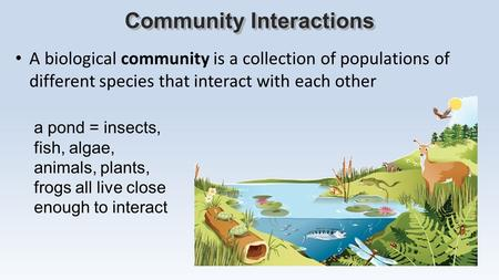 A biological community is a collection of populations of different species that interact with each other Community Interactions a pond = insects, fish,