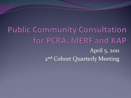 April 5, 2011 2 nd Cohort Quarterly Meeting. Session Objectives Based on the results of the PCRA (including KAP) and using the provided guidelines, each.