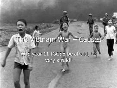 The Vietnam War – Causes WIS year 11 IGCSE-be afraid, be very afraid!