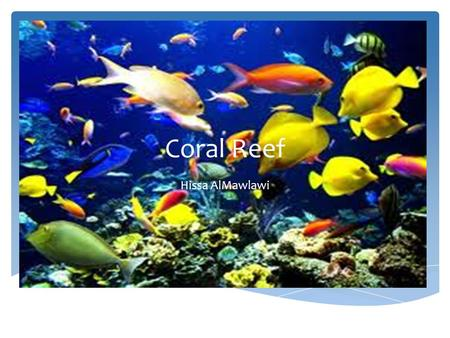 Coral Reef Hissa AlMawlawi. Locations  ocean/Coralreef.shtml Coral Reefs are the pink parts.