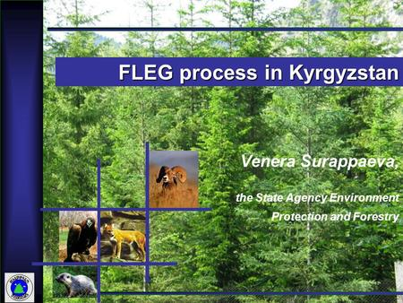 1 Venera Surappaeva, the State Agency Environment Protection and Forestry FLEG process in Kyrgyzstan.