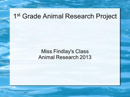 1 st Grade Animal Research Project Miss Findlay's Class Animal Research 2013.