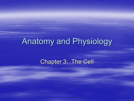Anatomy and Physiology Chapter 3: The Cell. Cell Theory  Cells are the building blocks of all plants and animals.  Cells are produced by the division.